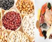 جایگزین گوشت / ۷ نوع لوبیا با ارزش غذایی بالا برای جایگزینی با گوشت