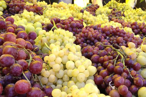 طبع میوه انگور سرد است یا گرم؟