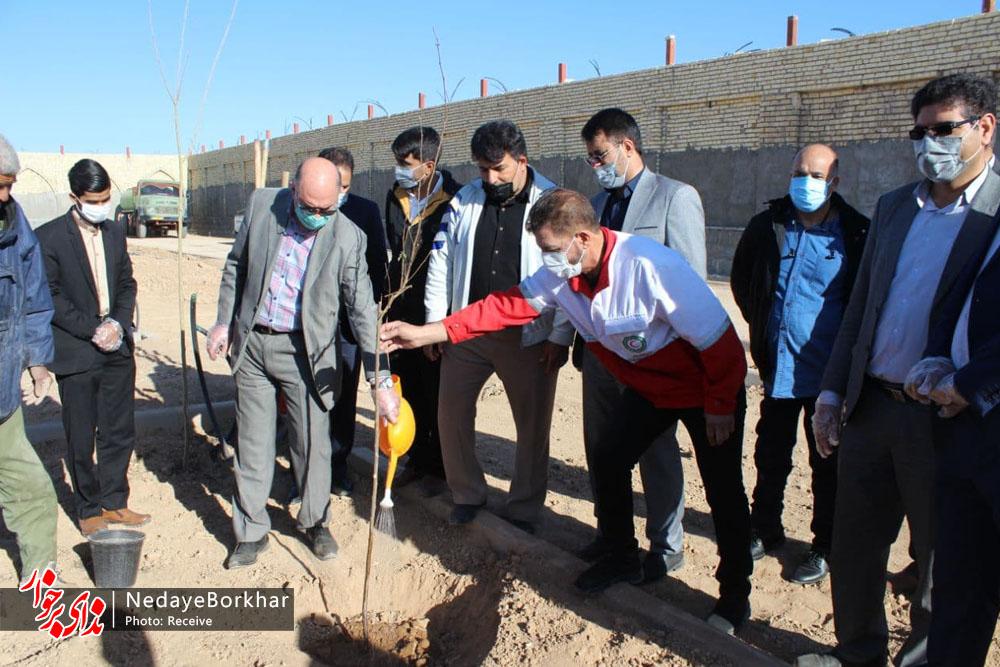 ۴۰ اصله نهال درخت در باغ بانوان دستگرد برخوار کاشته شد + تصاویر