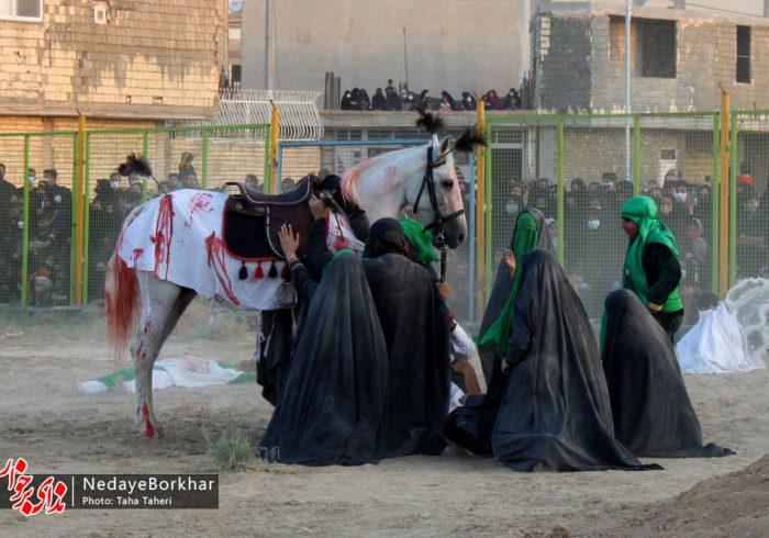 تصاویر   نمایش واقعه عاشورا و شهادت امام حسین (ع) در دولت آباد